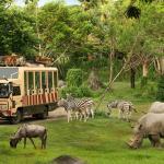 Бали сафари и морской парк