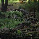 Foto de Bear Creek Bed and Breakfast Lodge