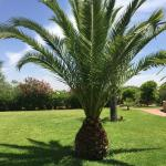 Foto de Les Jardins d'Issil