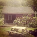 Foto de Phoenicia Lodge