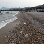 Ложка дёгтя --пляж и прибрежная полоса  были захламлены мусором, который не могли набросать отды