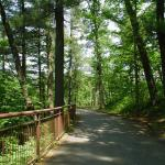 The Meditation Trail (apx. 1/2 mile)