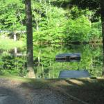 Pond with swimming area