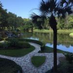 Foto de Sawgrass Marriott Golf Resort & Spa