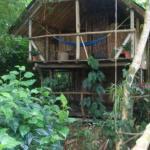 Foto de Sabalos Lodge