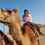 Paseo en camello