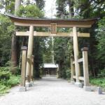 杉に囲まれて伊和神社