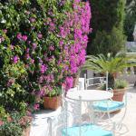 Foto de Hotel Villa Garden