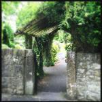 Celtic Park and Gardens Photo