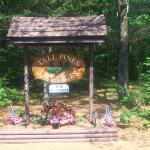 welcome to Tall Pines