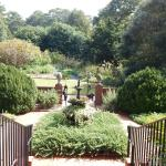 Step into the Gardens from the Hiram Butler House
