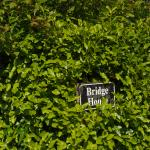 Hedge partly obscures sign.