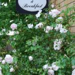 Photo of Bed & Breakfast Freiberg