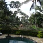 Foto de Elephant Safari Park & Lodge