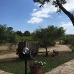 Foto de Agriturismo Campesi
