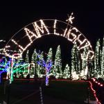 Christmas Lights at Coulon Beach