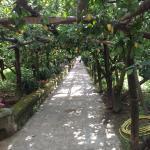Photo de Il Giardino di Vigliano