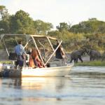 Game viewing from the Zambezi river