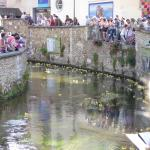 exterior of cathedral,town hall,duck race