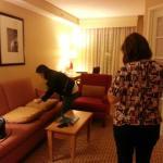 Foto de Anaheim Marriott Suites