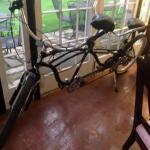 Tandem bike in sunroom