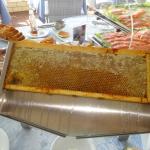 Colazione: Miele