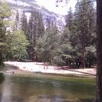 Merced River from campsite