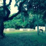 Tabby Ruins Slave homes at Kingsley Plantation