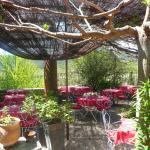 Le jardin ombragé et fleuri