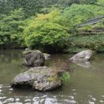 Echizen Daibutsu Foto