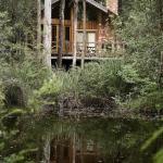 Laughing Ducks Rainforest Bungalow