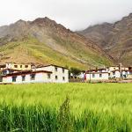 View From Fields,Mud Village