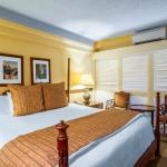 The Equus Hotel