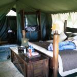Foto de Entim Camp