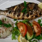 Special of the day sea bream