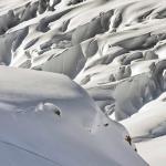 Photo de Alaska Powder Descents