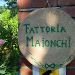 Fattoria Maionchi