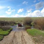 Crossing a creek