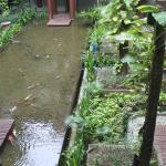 Foto de Mercure Kuta Bali