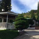 Kinabalu Pine Resort Photo