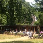The Cafe in the Garden