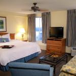 Hampton Inn & Suites Austin - Airport