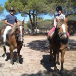 Pinetrees Horse Riding Image