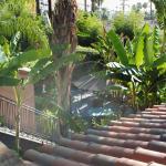 Foto de Hotel California