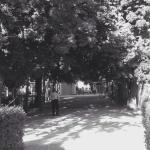 Un paseo muy relajante...