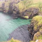 Do not miss the Rope bridge! Fantastic views!