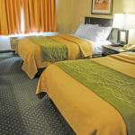 Foto de Comfort Inn & Suites North