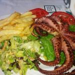 Excellent Octopus
