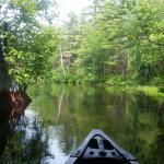 Foto de Sebago Trails Paddling Company