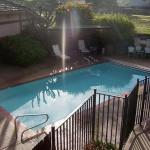 Heated Pool with BBQ Area